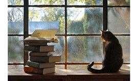 中秋以书会友,过个不一样的中秋节