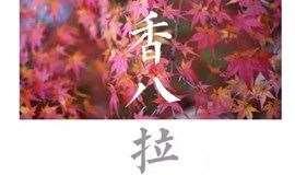 『交友』9.22周日 | 京城经典?#35762;?#20132;友线?#20998;?#39321;八拉