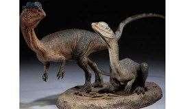 """【亲子-科普】小小地质家 化石第一季----地球故事开篇序""""解密化石"""""""
