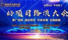 2020年·华中区·武汉站《好项目路演大会》火热报名中