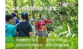 关键成长 | 走进七彩云南,中科院专家带你探索原始雨林的魅力