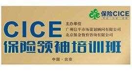 CICE保险领袖培训班
