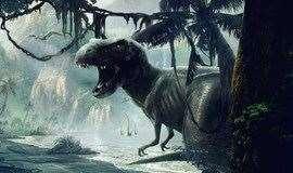 【亲子-科普】小小地质家 化石第二季---时空穿梭(上)—远古探秘,奇葩的生物