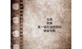 书潮 NO.111|阿兰德波顿 & 叔本华,11.19