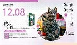 """""""城市之猫""""主题猫片分享——《2020喵呜不停》日历全国签售见面会·上海站"""