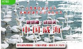 春节1.26-28:与天鹅共舞-天鹅湖烟墩角-海草房-中国最东海岸线成山头-青州古城-