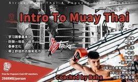 一起来学习泰拳成为斗士吧