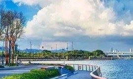 徒步深圳湾:观红树林,看深港公路大桥落日余晖