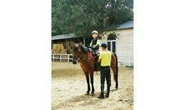识马、喂马、骑马——培养爱与勇气的马术课