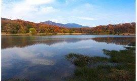 单身活动:徒步东郊明城墙、琵琶湖、前湖、燕雀湖(南京半日轻徒步)