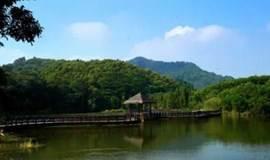 漫步城市氧吧大夫山,避暑赏景好去处(广州)