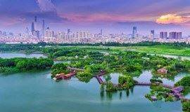 海珠湿地|探寻广州城市的绿心,岭南文化发源地(广州)