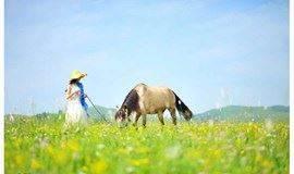 『草原』周五晚出发-草原•马背旅行|坝上广袤草原-休闲2日度假烤羊