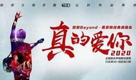 2020真的爱你-致敬BEYOND·黄家驹演唱会西安站
