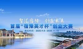 """""""智汇宿豫 创赢未来"""" 首届""""宿豫英才杯""""创业大赛"""