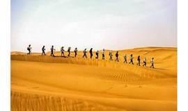 国庆三期:库布齐沙漠,星空露营,徒步穿越18公里,领队代租露营装备