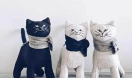 单身活动|Free talk周末单身交流会+撸猫+狼人杀(苏州活动)