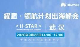 耀星 · 领航计划出海峰会 - 武汉场