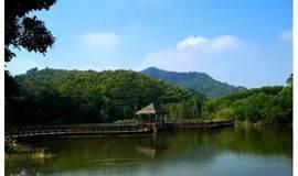 【特价】漫步城市氧吧大夫山,避暑赏景好去处(广州)