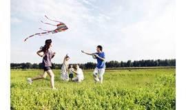 重阳节|乘秋风,让爱的陪伴永不缺席