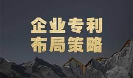 蒲公英-南京站   企业专利布局策略