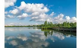 11.28海珠湖公园徒步采风,现场演练视频拍摄技巧,轻松告别游客照