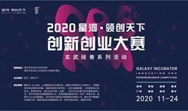 2020 星河·领创天下(南京)创新创业大赛