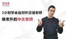 2小时学会做对外汉语老师-教外国人中文精品课(全模块)