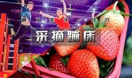 周末★采摘季 草莓采摘&蹦床乐园 亲子1日行