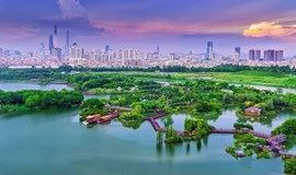 【特价】海珠湿地|探寻广州城市的绿心,岭南文化发源地(广州)