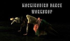 知更鸟现代舞体验工作坊 Dance Workshop