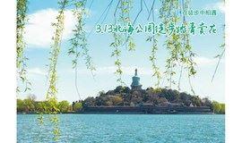 3月13日北海公园徒步踏青赏花