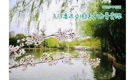 3月20日鲁迅公园徒步踏青赏花,初樱绽放