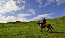 周末2日 坝上草原 骑马 篝火 烤全羊K歌 放烟花-草原的约定 入住特色蒙古包