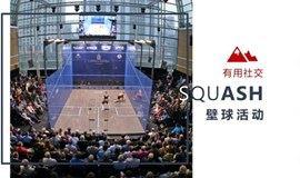 【有用社交】上海娱乐&运动:壁球报名