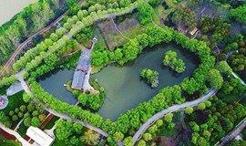 相约绿博园,江边踏青赏花,感受春天的气息(南京活动)