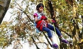 【亲子活动】周末1日攀树の玩出新奇和刺激 亲近自然-放飞心灵(可自驾也可搭车)