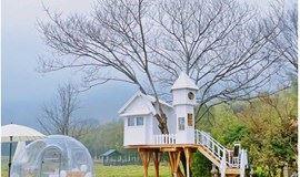 遇见卢浮宫风格的法式浪漫茶园,相约最美网红乡村,漫步黎里古镇(1天活动)