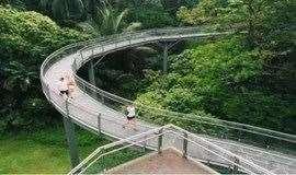 【特价】穿越首条绝美的空中步道,看尽云上广州美景(广州)