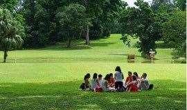 周日下午,相约中央公园,来一场草地狼人杀活动(苏州单身活动)