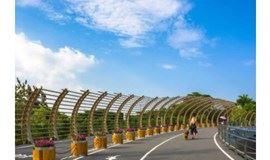 (特价)5.9徒步深圳湾:观红树林,边逛边聊