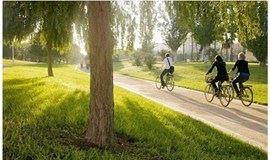 【特价】骑行城市氧吧大夫山,烧烤赏景好去处(广州)