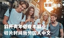 线上|对外汉语分享会&教学实战 #轻松有趣的黄金副业 #教外国人中文 #拓展国际视野