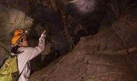 周末1日 【探洞】感受大自然的鬼斧神工,探寻地球深处的秘密—天然洞穴探险