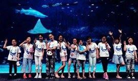 周末2日 夜宿海洋馆  在北京海洋馆,寻找属于你的海底奇缘