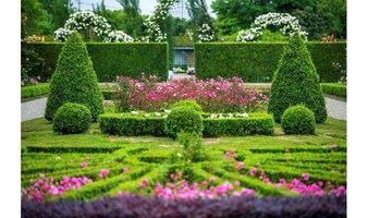 五月玫瑰园的下午