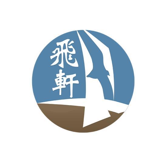 温州飞轩电子商务有限公司