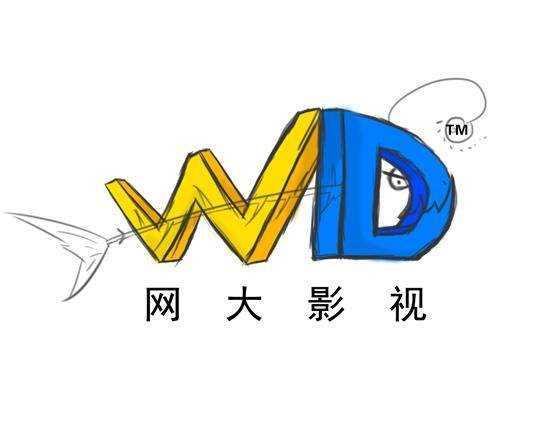 深圳网大影视传媒有限公司
