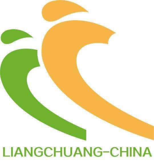 浙江两创信息科技有限公司