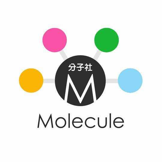分子日月教育科技有限公司
